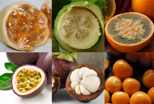 Las 12 frutas ex ticas que los extranjeros prefieren de colombia contexto ganadero noticias - Frutas tropicales y exoticas ...