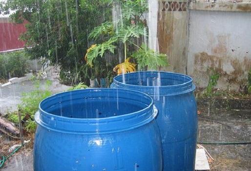 Aprenda como recolectar y almacenar aguas lluvias   CONtexto ganadero    Noticias principales sobre ganadería y agricultura en Colombia