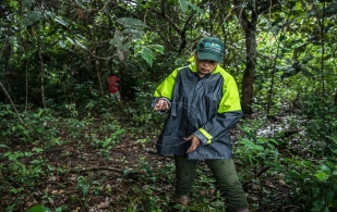 ganadería, ganadería colombia, noticias ganaderas, noticias ganaderas colombia, contexto ganadero, blanca raquel guerrero, gcs, proyecto ganadería colombiana sostenible, tnc, the nature conservancy, contexto ganadero ganadería sostenible, agricultura y ganaderia sostenible, equidad de género en ganadería, mujeres ganaderas,
