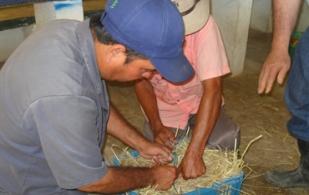 Con canastas de plástico, un trozo de cuerda delgada y pasto seco se forman las pacas de heno, vitales para épocas críticas.