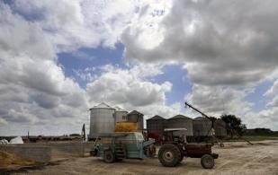 mitos del sector rural