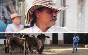 Juez Cesar Payan, juzgamiento, armonía del bovino, observar y seleccionar, analizar patas y manos, mirar los testículos, tocas testículos, mirar las costillas, generalidad del bovino, CONtexto ganadero, noticias de ganadería colombiana.