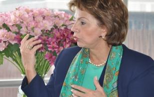 María Mercedes Gómez, Bancamía