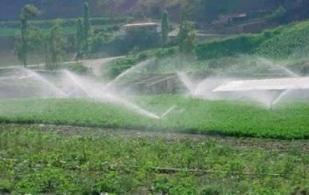 Sistemas de riego, un beneficio para el agro colombiano.jpg