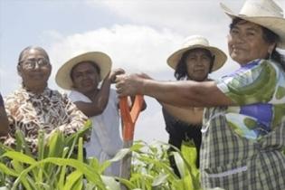 agroshow, Primer Encuentro Nacional de las Mujeres en el Agro, mujeres del campo, mujeres agro, sector agropecuario, sector agroindustrial, Tecnología campo Colombia, Sector rural, ruralidad Colombia Innovación del campo, innovación sector agropecuario, Agroshow 2020, Agroshow Pajonales, Agroshow Pajonales 2020, noticias Agroshow Pajonales, Agroshow Pajonales cifras, Agroshow Pajonales colombia, CONtexto ganadero, ganaderos colombia, noticias ganaderas colombia