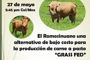 Ganadería, ganadería colombia, noticias ganaderas, noticias ganaderas colombia, CONtexto ganadero, Romosinuano, ventajas romosinuano, romosinuano colombia, producción carne romosinuano, carne Romosinuano, criadero caballeros templarios, alejandro giraldo villegas
