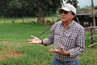 silvopastoriles, luis alfonso giraldo, U Nacional de Colombia, Antioquia, CONtexto ganadero, ganadería, ganadería colombia, noticias ganaderas, noticias ganaderas colombia,