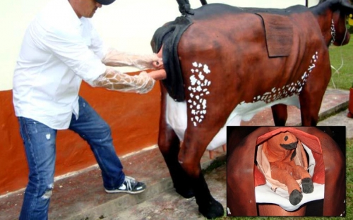 vaca maniquí