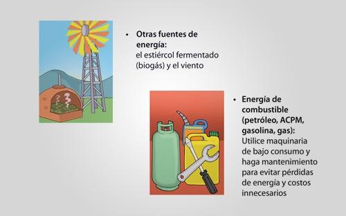 Prácticas ambientales ayudan a la productividad su empresa