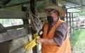 Logrando zonas libres de fiebre aftosa y brucelosis