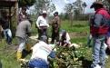 Jóvenes Coocampo, productores Coocampo Boyacá 2017, ganaderos Boyacá Coocampo 2017, grupo de jóvenes Coocampo 2017, capacitaciones jóvenes Coocampo 2017, proyecto Impact, proyectos ganaderos Coocampo Boyacá 2017, CONtexto ganadero, ganaderos colombia