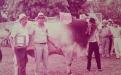Biotecnología reproductiva, hacienda la Siberia, inseminación artificial, transferencia de embriones, fertilización in vitro, aspiraciones, súper ovulación, desarrollo de Brahman, campeones, hembras de gran estándar, CONtexto Ganadero, noticias de ganadería colombiana.