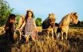 ganadería, ganadería colombia, noticias ganaderas, noticias ganaderas colombia, contexto ganadero, mini horses, equinos, ponys, mini horses en colombia, criadero de mini horses, Arnulfo Ramírez Sánchez