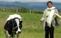 vaca por la pazx