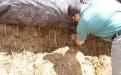 Fabricar heno y preservar forrajes en Colombia