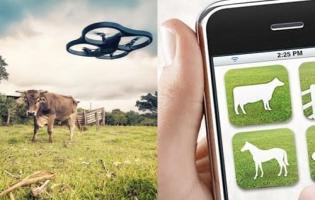 Ganadería, ganadería colombia, noticias ganaderas, noticias ganaderas colombia, CONtexto ganadero, nuevas tecnologías, drones ganadería, robots ganadería, software ganadería, tecnologías ganadería, código QR ganadería