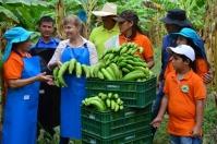 ganadería, ganadería colombia, noticias ganaderas, noticias ganaderas colombia, contexto ganadero, frutas, frutas valle del cauca, producción de frutas del valle del cauca, chile, visita de chile al valle del cauca, gobernación del valle del cauca,
