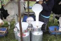 Industria seduce al gobierno, libertad de precios al productor de leche, precios por oferta y demanda, esquema 70-30, Acuerdo de Competitividad del Sector Lácteo, pago por calidad, guerra de precios, convertir leche en polvo en liquida, fomento al consumo, CONtexto ganadero, noticias de ganadería colombiana.