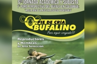 Ganadería Bufalina en Colombia, Jornada Académica Pie de Cría Bufalino, búfalos en Colombia, Razas de búfalos en Colombia, Historia de los búfalos en Colombia, raza buffalypso en Colombia, raza Murrah en Colombia, raza Mediterránea en Colombia, alta producción lechera de búfalos, producción búfalos Colombia, carne búfalo, CONtexto ganadero, ganaderos colombia, noticias ganaderas Colombia