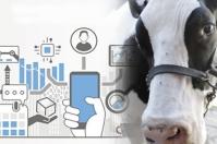 Industria 4.0, industria 4.0 ganadería, evolución de la industria, industria 4.0 lechería, ganaderos industria, ganaderos industria 4.0, inteligencia artificial en ganadería, inteligencia artificial, avances tecnología ganadería, Tecnología en ganadería, tecnología en el campo, ordeño robotizado, ganadería colombiana, CONtexto ganadero, ganaderos colombia, noticias ganaderas colombia