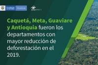 Ganadería, ganadería colombia, noticias ganaderas, noticias ganaderas colombia, CONtexto ganadero, deforestación, deforestación en Colombia, cifras de deforestación en colombia, IDEAM, Ministerio de Medio Ambiente, deforestación 2019 en colombia, cifras de deforestación en colombia 2020