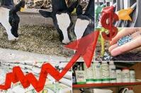 insumos, precios, fletes, contenedores, dólar, tasa de cambio, Comercio, materias primas, transporte fluvial, combustibles, China, Analdex, Pandemia, oferta, demanda, logística, Producción, Unctad, costos, venta al público, rutas, índice mundial de contenedores, inflación, bienes básicos, MinComercio, fenalco, día sin iva, Alimentos, cadena de suministro, Ganadería, ganadería colombia, noticias ganaderas colombia, CONtexto ganadero