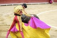 Toros de Mondoñedo, primer ganadería de Colombia, Toros bravos y de casta, toros serios,  segunda de abono en Bogotá, Robleño y Chacón, De Castilla, CONtexto ganadero, noticias de ganadería colombiana.