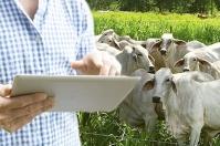 Desafíos tecnológicos en fincas ganaderas, tecnología en fincas, tecnología en fincas ganaderas Colombia, Desafíos en fincas lecheras en tecnología y medio ambiente, Tecnología en ganaderías, CONtexto ganadero, ganaderos Colombia, noticias ganaderas Colombia