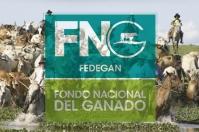 Fondo Nacional del Ganado, FNG, Fedegán-FNG, fedegan, Minagricultura, parafiscalidad, administración recursos parafiscales, funciones del FNG, control del FNG