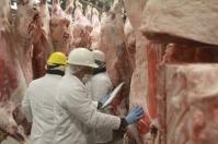 Producción de carne, carne bovina, carne de res, bioeconomía, consumidores conscientes, consumidores empoderados, carne valor agregado, producción de carne de res, exportaciones de carne de res, sostenible, ganado bovino, ganadería bovina, carne, leche, ganaderos, ganaderos colombia, ganado, vacas, vacas Colombia, bovinos, Ganadería, ganadería colombia, noticias ganaderas, noticias ganaderas colombia, CONtexto ganadero, contextoganadero