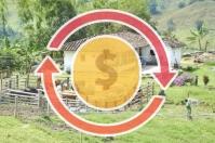 Ganadería, ganadería colombia, noticias ganaderas, noticias ganaderas colombia, CONtexto ganadero, producción ganadera, producción ganadera sostenible, utilidad operativa, promedio de lactancia, retorno de inversión por vaca, retorno de inversión en ganadería