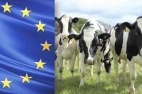 leche, unión europea, Producción, consumo, Bienestar Animal, alimentación, sostenibilidad, lácteos, productividad, Nueva Zelanda, Genética, procesamiento, quesos, mantequilla, vaca, prevención de enfermedades, países en desarrollo, Ganadería, ganadería colombia, noticias ganaderas colombia, CONtexto ganadero