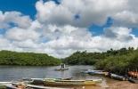 Banco Mundial, 5 razones para cuidar los manglares, Reservorios de biodiversidad,  muro natural para proteger las costas, los manglares están desapareciendo a gran velocidad, Contexto ganadero, noticias ganaderas