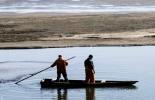 FAO, cambio climático, pesca, recursos pesqueros, el cambio climático está afectando la abundancia y la distribución de los recursos pesqueros, dióxido de carbono. efectos del cambio climático, contexto ganadero, noticias ganaderas, vacas, agricultura, pesca