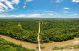Colombia, Fedepalma, concurso de fotografía, 10 versión del concurso de fotografia, categoría ambiental, catedoría social, Contexto ganadero, noticias ganaderas, palma de aceite