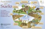 suelo, importancia del suelo, calidad suelo, servicios ecosistémicos del suelo, funciones del suelo, guía buenas prácticas para gestión y uso sostenible del suelo en áreas rurales de la FAO, uso del suelo agrícola en Colombia, uso del suelo en colombia, suelo ganadería, suelo agricultura, Ministerio de Ambiente, FAO, Organización de las Naciones Unidas para la Alimentación y la Agricultura, CONtexto ganadero, ganaderos colombia, noticias ganaderas colombia