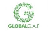 Procultivos, Andi, GlobalGAP, localGAP, certificación, auditoría, agricultores, Buenas Prácticas, mentes fértiles, CuidAgro, ICA, Sena, facilitadores, verificadores, ganadería, ganadería colombia, noticias ganaderas colombia, contexto ganadero