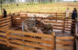 El CIDTEO ha servido de prueba piloto para crear una cadena de centros similares en el país. Foto: Agencia de Noticias UN.