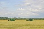tecnología, innovación agropecuaria, tecnología agropecuaria, jóvenes, jóvenes rurales, proyecto tecnología y agricultura meta, mintic, contexto ganadero, ganadería colombia
