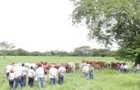 Córdoba Sin Fronteras Internacional, evento ganadero, evento ganadero Córdoba, Gira ganadera, ganaderos extranjeros visitan Colombia