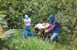 ganadería, ganadería colombia, noticias ganaderas, noticias ganaderas colombia, contexto ganadero, car, car cundinamarca, ganadería sostenible cundinamarca,