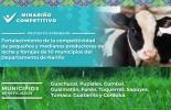 Ganadería, ganadería colombia, noticias ganaderas, noticias ganaderas colombia, CONtexto ganadero, Nariño, leche nariño, ganaderos Nariño, ganadería nariño, Producción de leche en nariño, calidad suelo nariño, lechería nariño, Gobernación de Nariño