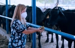 Ganadería, ganadería colombia, noticias ganaderas, noticias ganaderas colombia, CONtexto ganadero, Silo, silo atlántico, centro de silo atlántico, silo para ganaderos del atlántico, forraje ganaderos del atlántico,