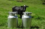 Ganadería, ganadería colombia, noticias ganaderas, noticias ganaderas colombia, CONtexto ganadero, leche, leche antioquia, leche represada antioquia por el paro, 2 millones de litros de leche represados en antioquia, Gobernación de Antioquia, sacar leche de antioquia en helicoptero