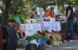 Ganadería, ganadería colombia, noticias ganaderas, noticias ganaderas colombia, CONtexto ganadero, mercados agroecológicos, unal, unal sede palmira, mercados campesinos, alimentos saludables, canastas agroecológicas,