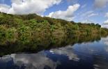 Amazonía colombiana.