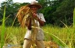 Corredor tecnológico Cundinamarca