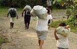 En Magangué habría más de 20.000 víctimas del conflicto armado. Foto: Archivo.