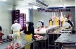 La planta de Sucre fue avalada porque cumplió las exigencias de infraestructura y bienestar animal