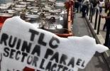 Sector lácteo de Colombia en alerta frente a los TLC